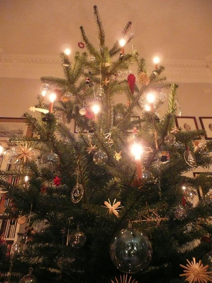 Weihnachtsbaum. Das schönste an Weihnachten? Die Vorfreude. Weihnachtliche Kindheitserinnerungen am 13. Dezember im Adventkalender von Babyspeck & Brokkoli auf babyspeck.at. Gastbeitrag von Die Kuckucks.